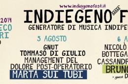 Indiegeno Fest 2014